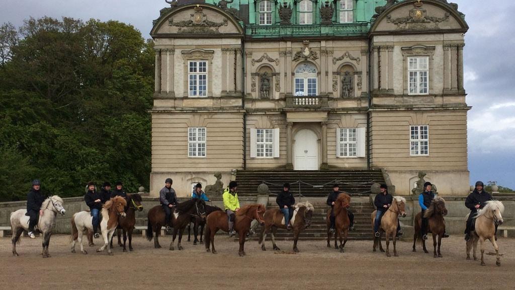 Hesteudlejning og rideture i Dyrehaven
