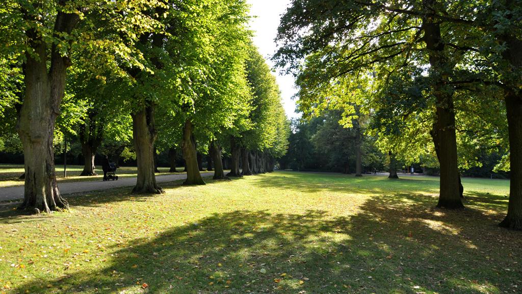 """Résultat de recherche d'images pour """"parc verdoyant"""""""