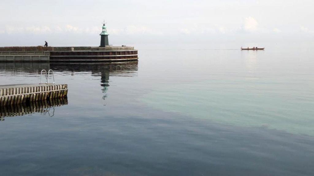 Hellerup Harbour