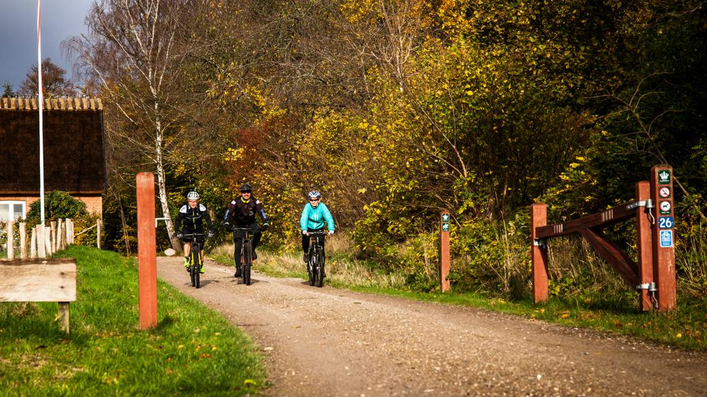 Parforce Cykelrute 105 | VisitNordsjaelland