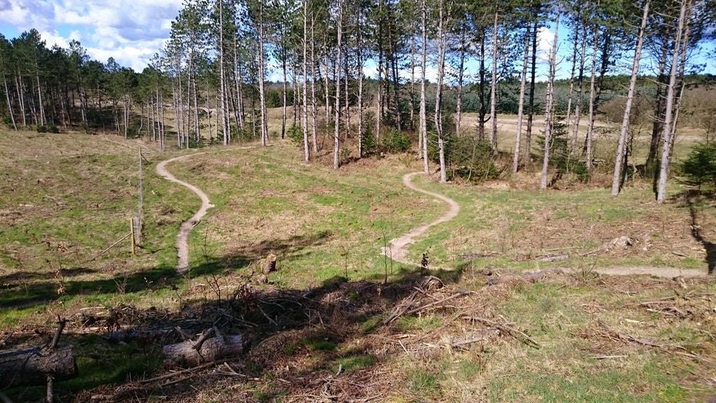 Mtb track i sdr. plantage Ebeltoft