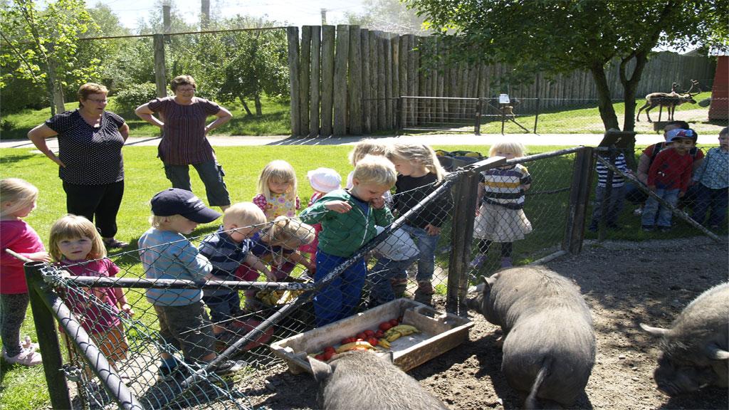 Annelise Munkholm Zoo