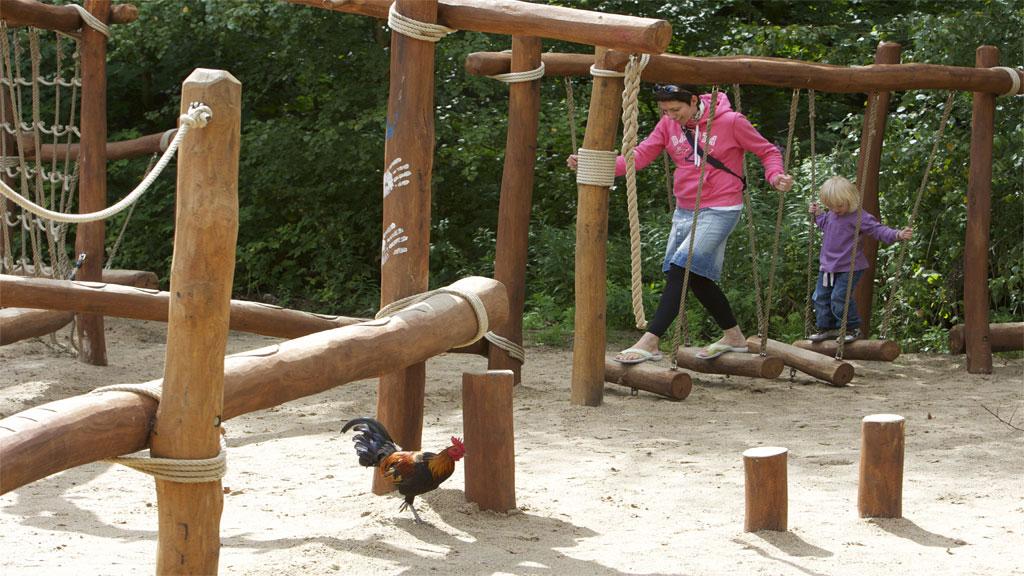Ree Park Safari
