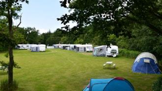 Darum Camping bei Esbjerg