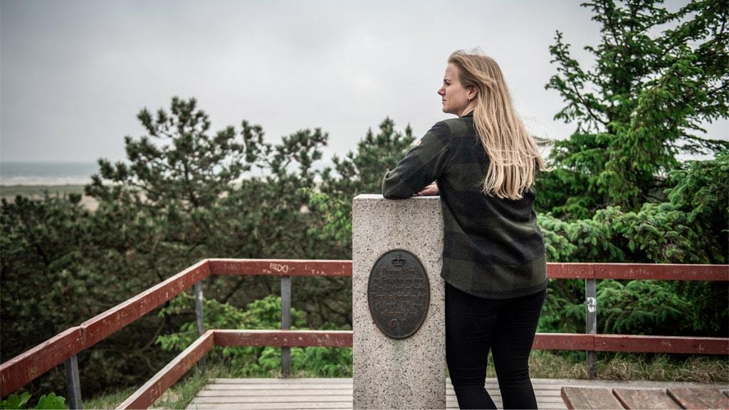 Stenen på toppen af Pælebjerg