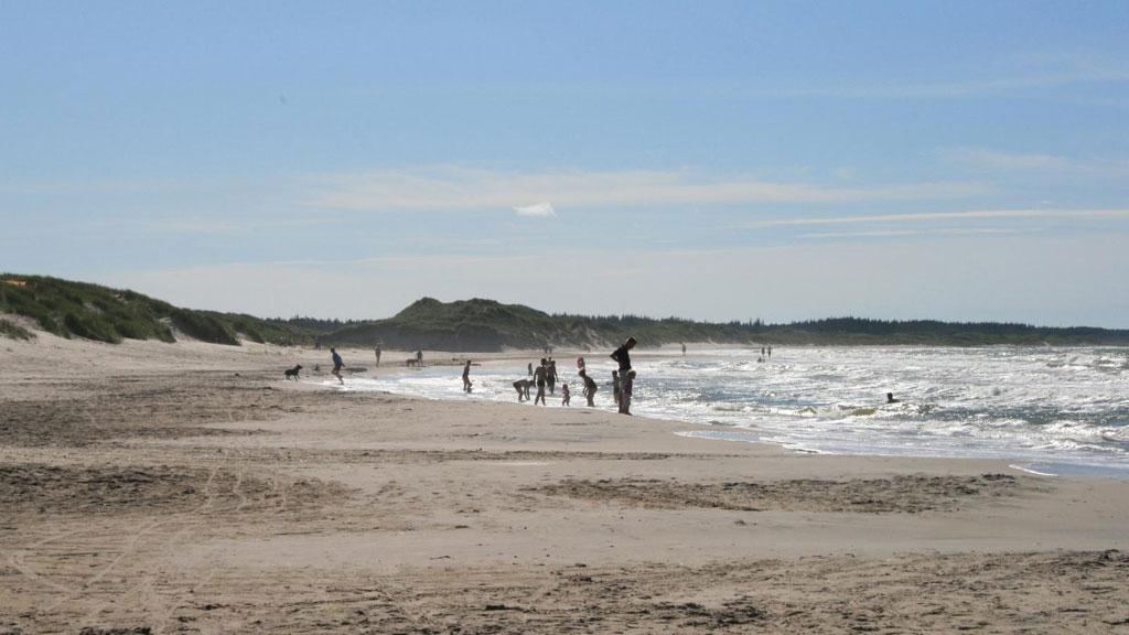 Tversted Strand (beach) | VisitNordjylland