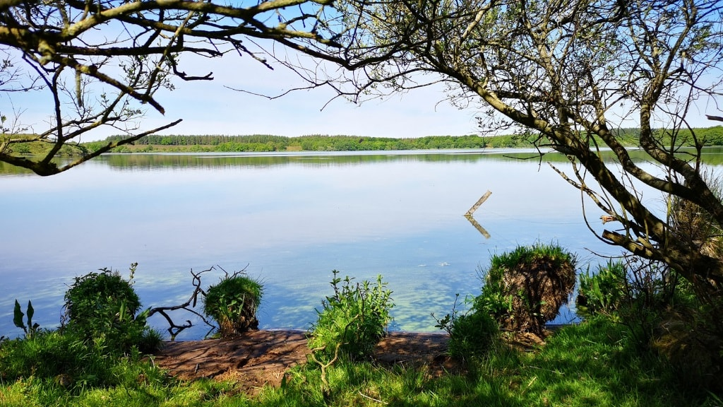 Ådalstien - sø