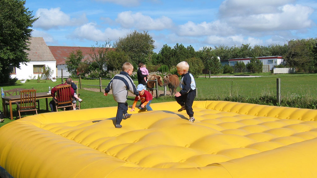family farm fun park toppenafdanmark