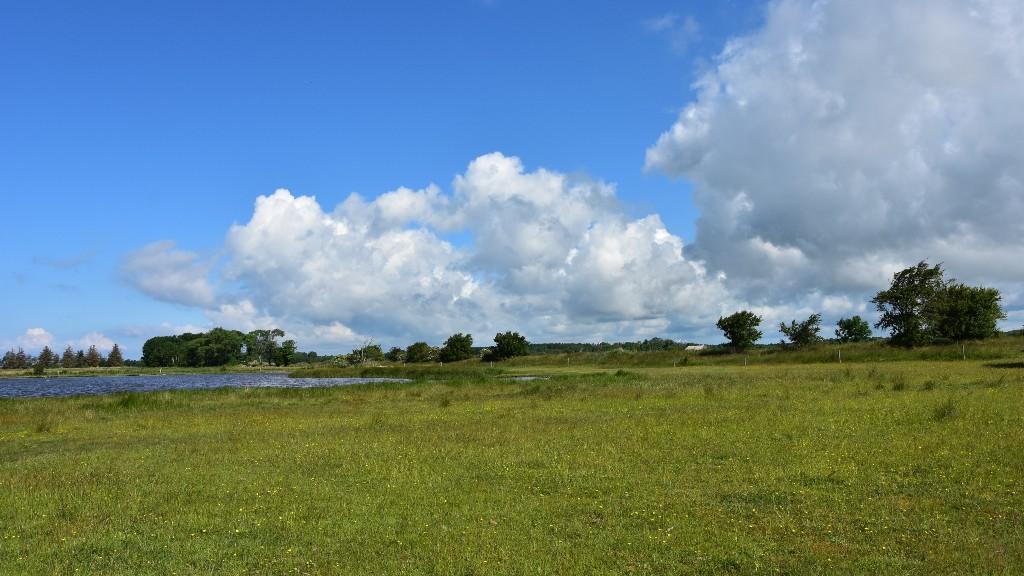 Naturlandet