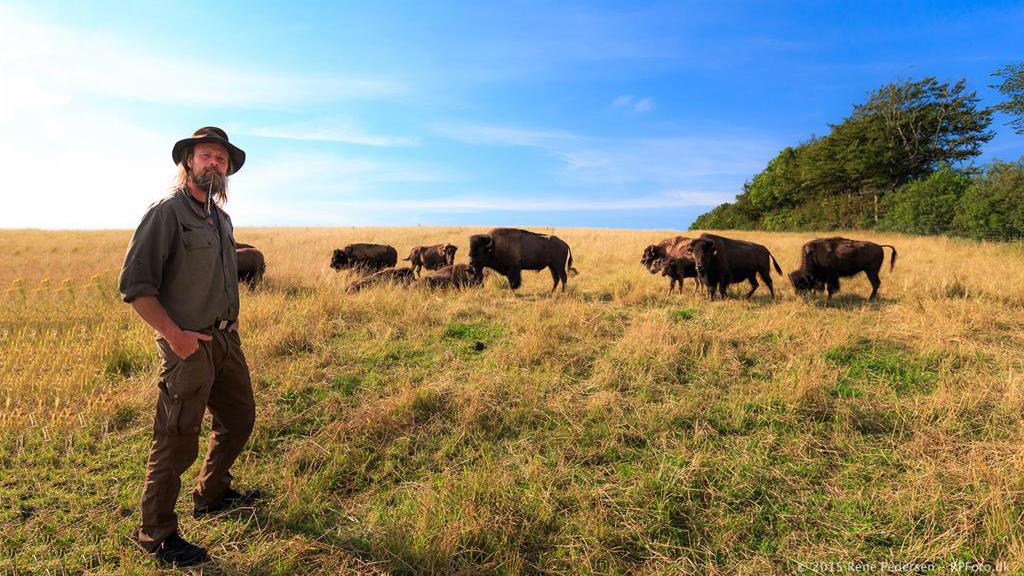 Bisonfarm - Flemming og bisoner