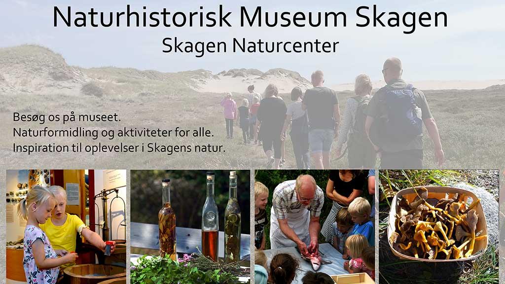 Naturhistorisk Museum Skagen