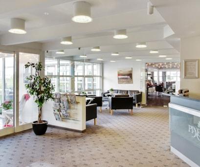 Hotel Pinenhus - Forretning