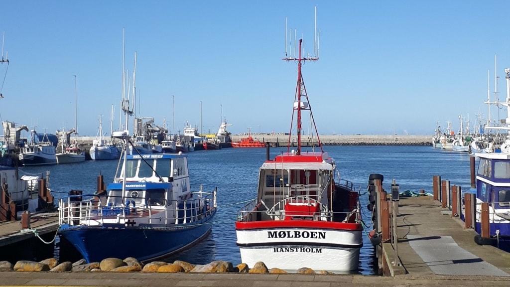 Rederiet Gule Rev - lystfiskerskibe