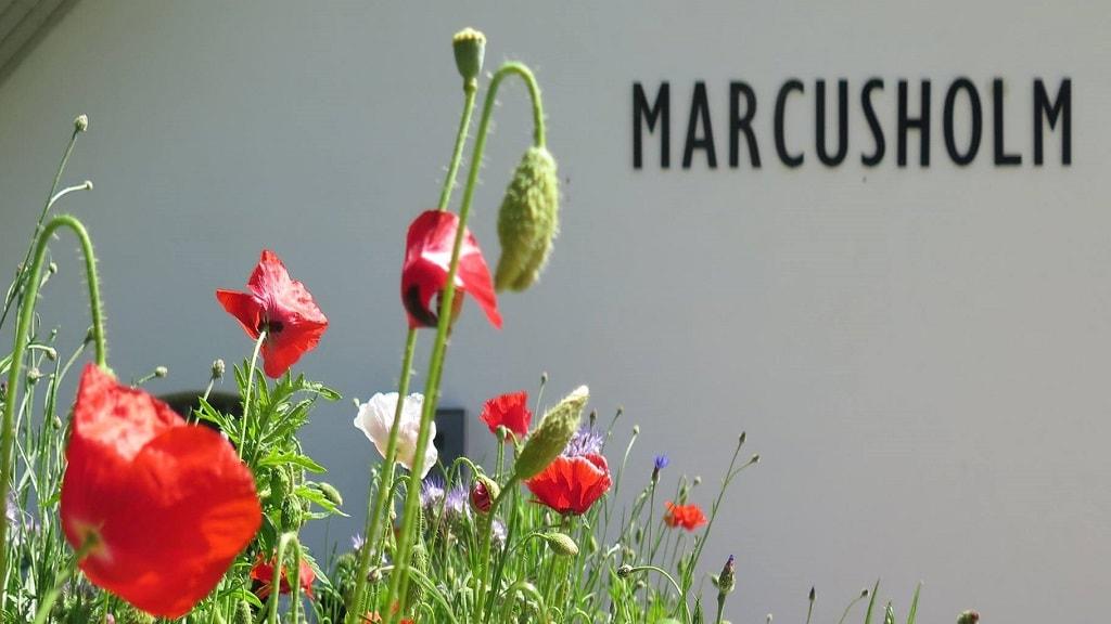 Gaardbutik marcusholm