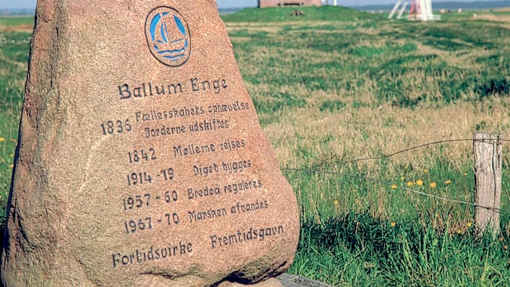 Ballum Enge sten