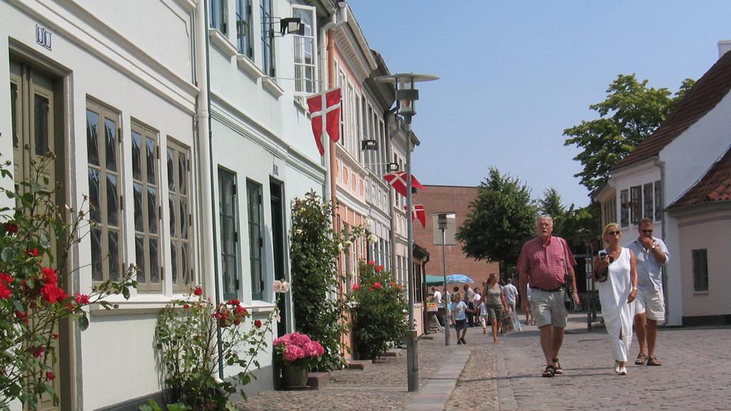 escirtguide den gamle bydel i Odense
