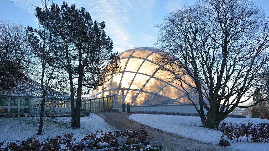 Væksthusene I Botanisk Have Visitaarhus