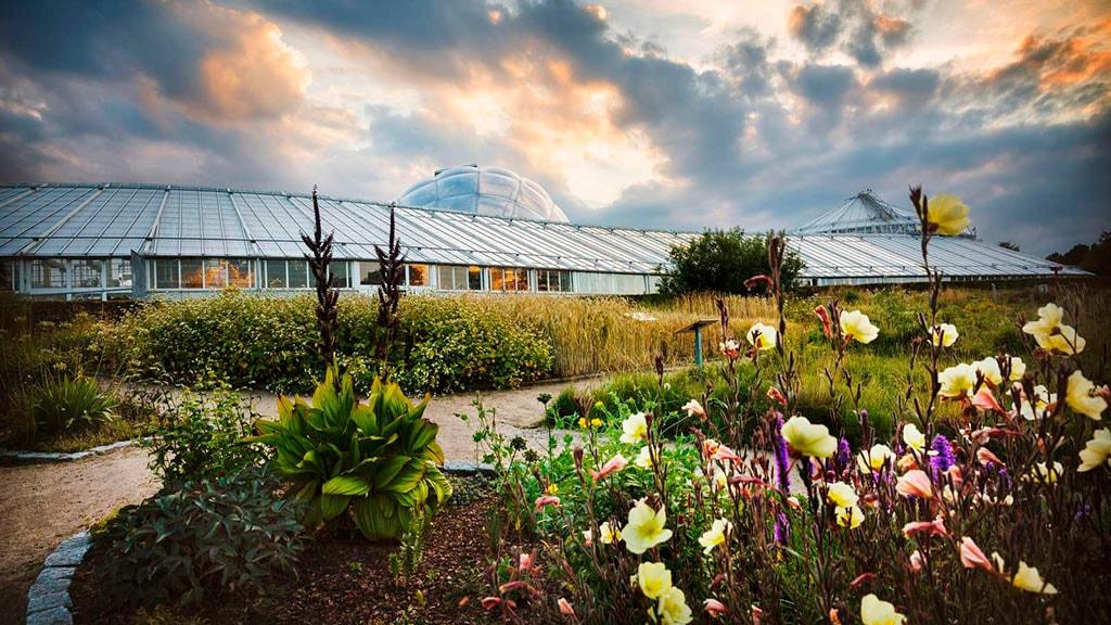 Væksthusene og Botanisk Have i Aarhus