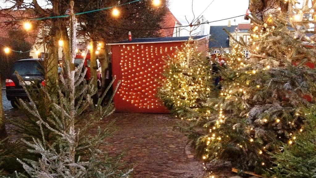 Julemarked juletræer og skur
